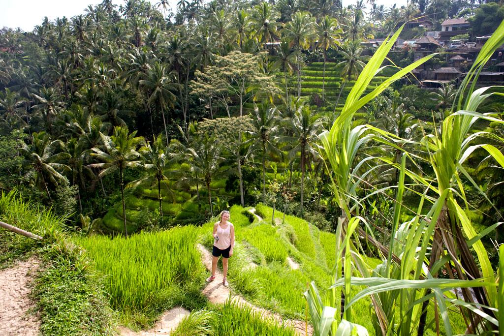 Tegalalang-rice-field-Bali4