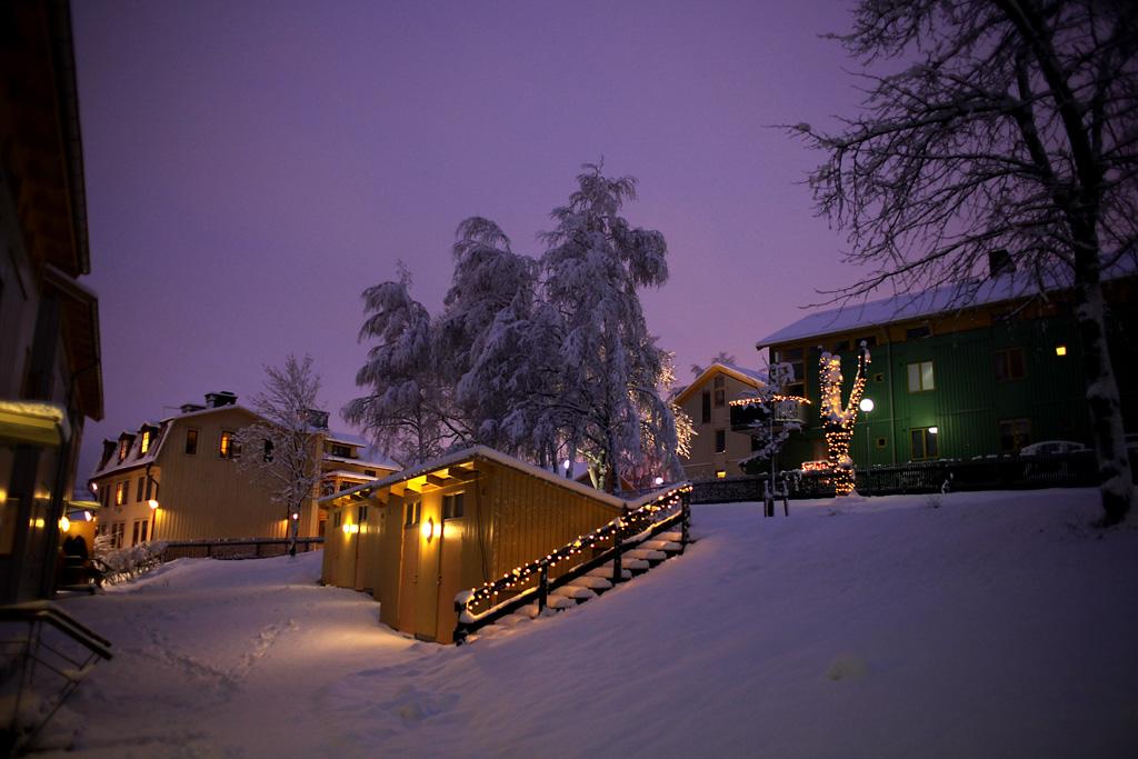 vinter.webb