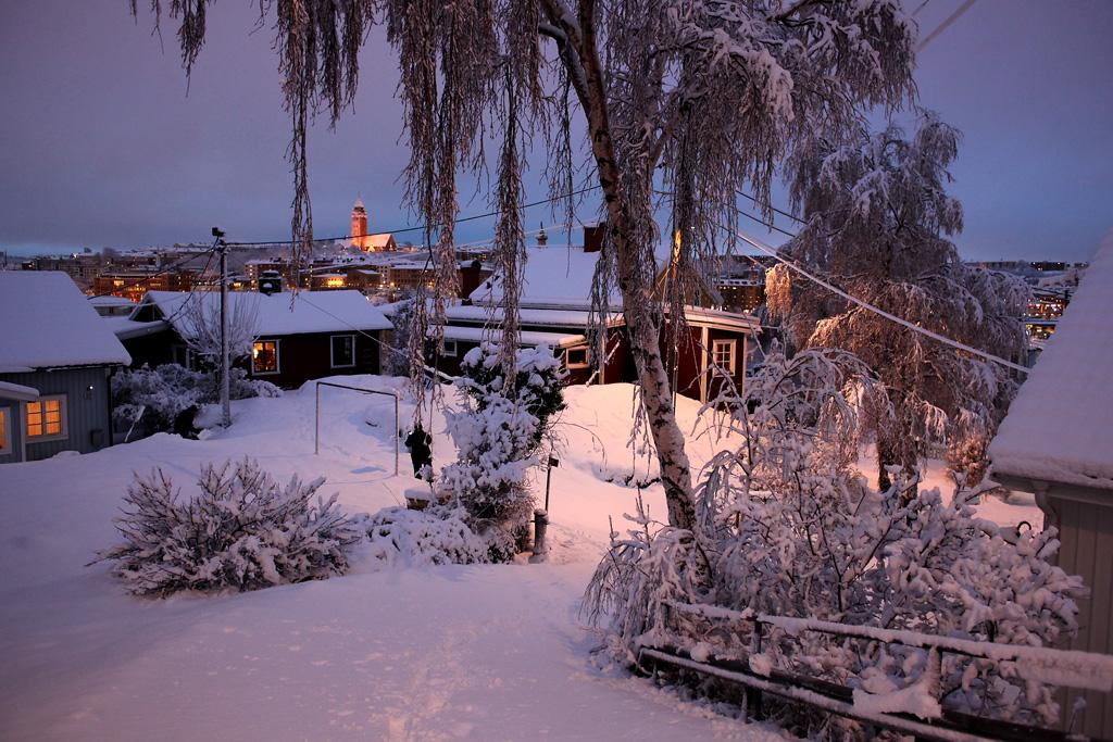 vinter10.webb