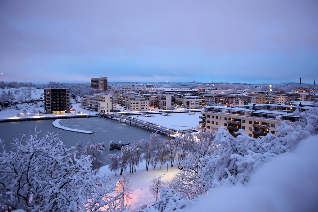vinter11.webb