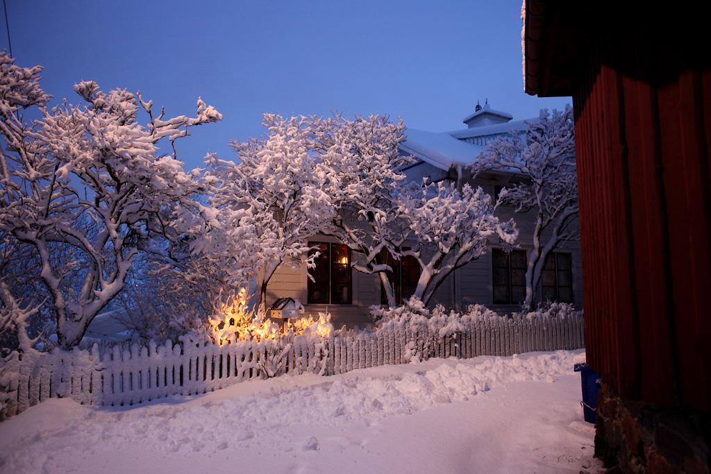 vinter13.webb