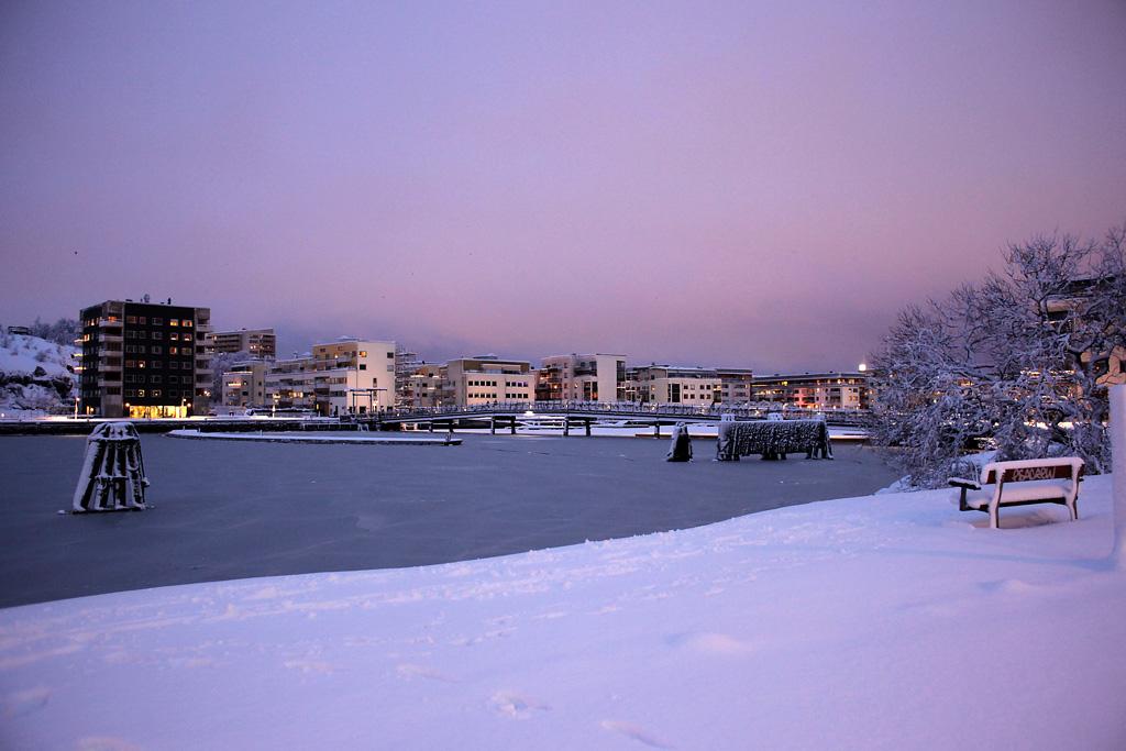 vinter2.webb