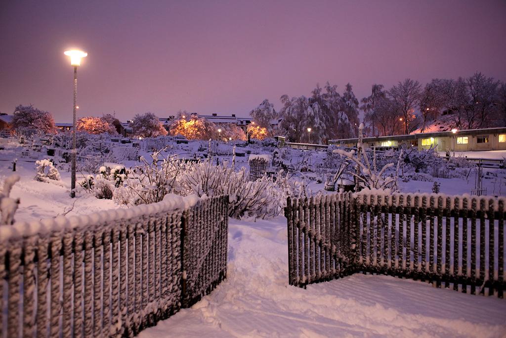 vinter3.webb