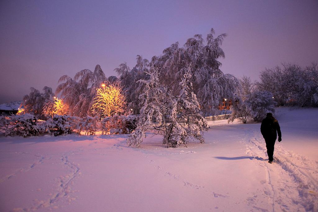 vinter5.webb