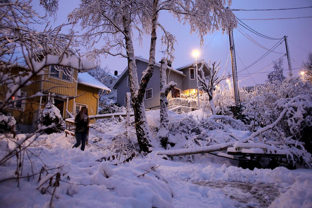 vinter6.webb