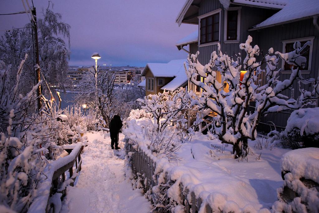vinter7.webb