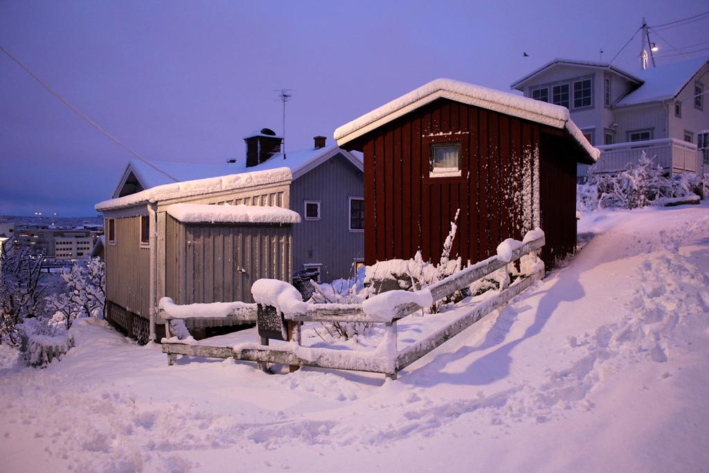vinter9.webb